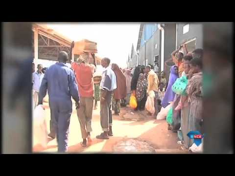 UN halves Kenya refugees' food after aid shortfall