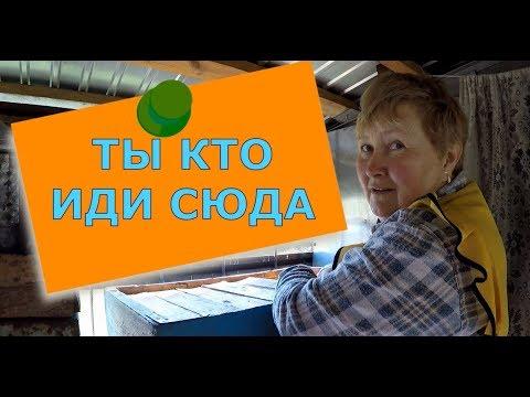 🔴🔴🔴 В гостях на пасеке у пчеловода покупаю мед.Крым 2018