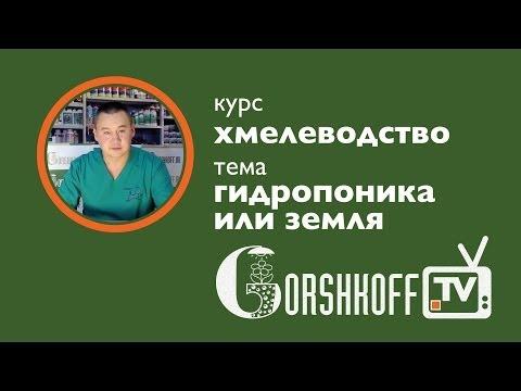 ГИДРОПОНИКА ИЛИ ЗЕМЛЯ. Music Videos