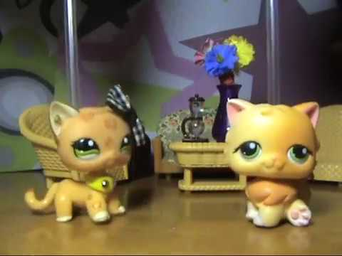 LPS сериал: Новая жизнь Тэйлор ( 1 серия 1 сезон ) / Taylor's new life ( 1 episode 1 season ) 猫