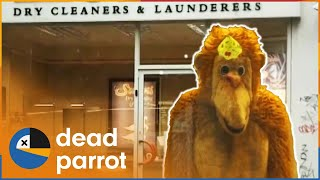 Trigger Happy TV - Series 1 Episode 3 (Full Episode)