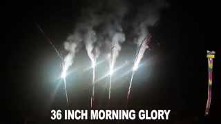 "36"" MORNING GLORY SPARKLERS"