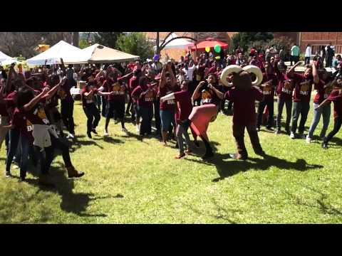Harlem Shake : Huston Tillotson University