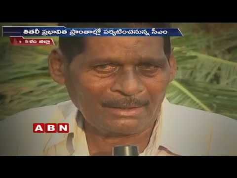 Titli Cyclone Effect in Srikakulam  | Face to Face With Coconut Farmers | ABN Telugu