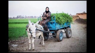 Egyptian countryside - the good people of Egypt