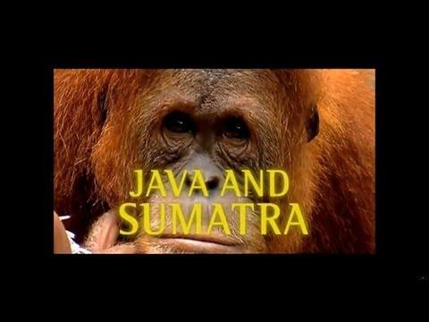 Globe Trekker - Java and Sumatra featuring Megan McCormick