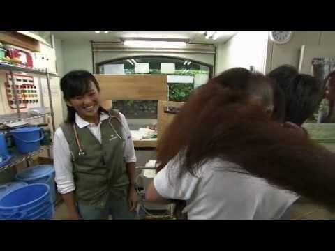 """動物たちの""""元気""""を支えたい!-王子動物園・山田獣医師"""