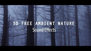 30 FREE Ambient Nature Sounds Effect | Cinematic Sounds Effects