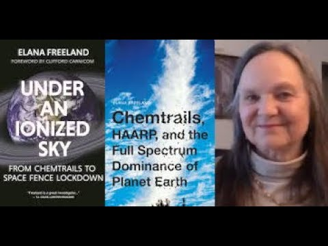 Elana Freeland: HAARP, Energy Weapons, NanoTech, A.I., Transhumanism, 5G, TI-Organized Stalking