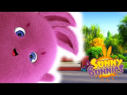 Cartoons For Children | Sunny Bunnies FUN DAY OUT | Funny Cartoons For Children