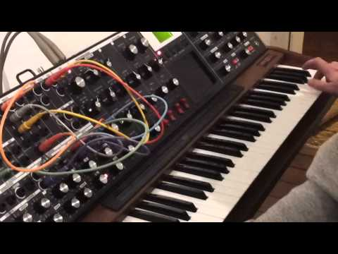 Galleri Riga - One day with Moog