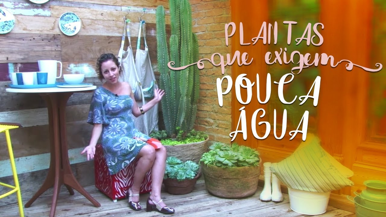 plantas de jardins tipos:Jardim com plantas que exigem pouca água – YouTube