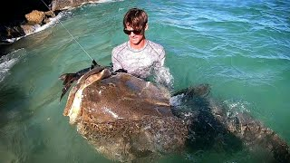 GIANT FISH Biggest EVER CAUGHT from LAND!!