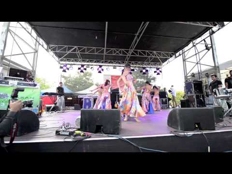 Party getting hot - Mika Singh Holi Concert 2013 Melbourne -...