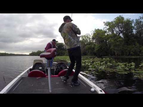 Ten Pound Bass St Johns River