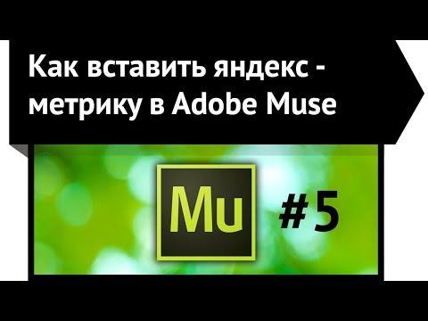 Как вставить яндекс - метрику в  Adobe Muse