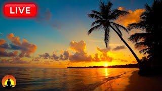 🔴 Relaxing Sleep Music 24/7: Music to Help You Fall Asleep