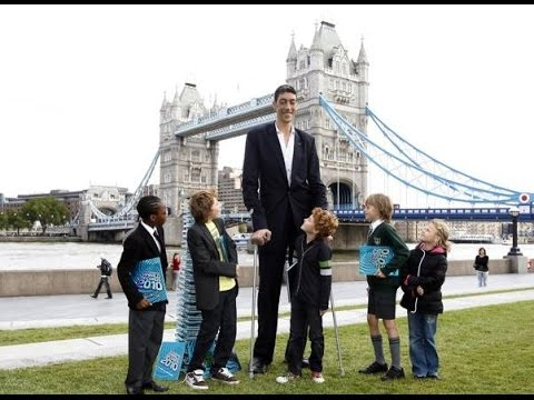 Tallest human in the world