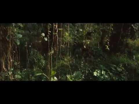 'A Árvore Forca' Jogos Vorazes A Esperança Parte 1 - Música Oficial Do Filme