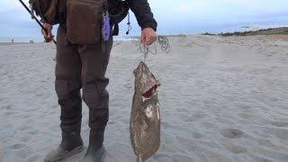 遠州灘海岸物語2 サーフでヒラメ