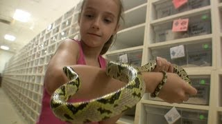 My Daughter Invades BHB Reptiles! [SNAKE PARADISE]