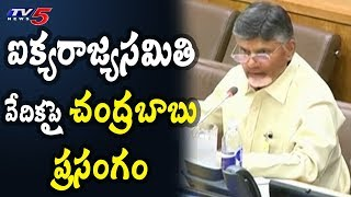 Chandrababu Speaks On Natural Farming At UNO Conference