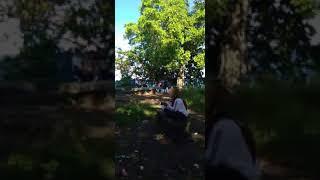 DESAHAN DI HUTAN