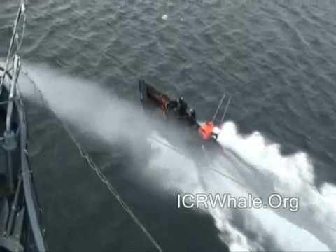 February 16, 2012 Sea Shepherd Zodiac's Attack Yushin Maru # 3