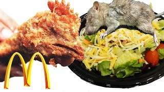 Top 10 Disgusting Things Found In McDonald Foods