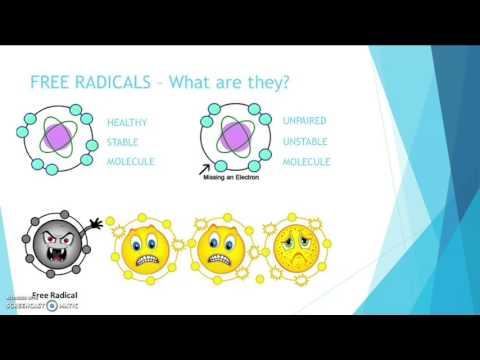 What is Oxidative Stress, Free Radicals & Antioxidants | Katie Rose