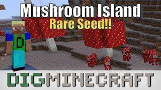 Rare Mushroom Island Seed in Minecraft (Java Edition 1.13)