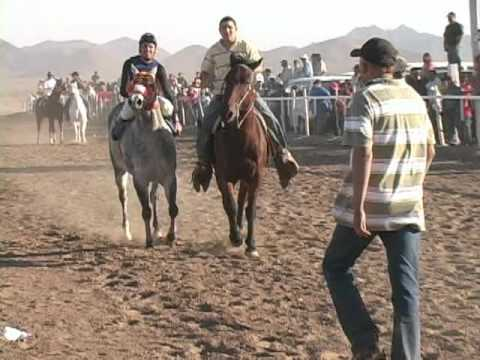 carreras de caballos pitiquito sonora