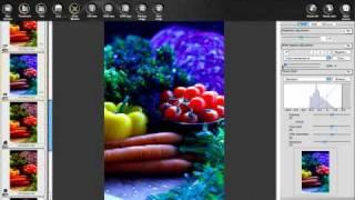 Canon Digital Photo Professional Tutorial  Tool pa