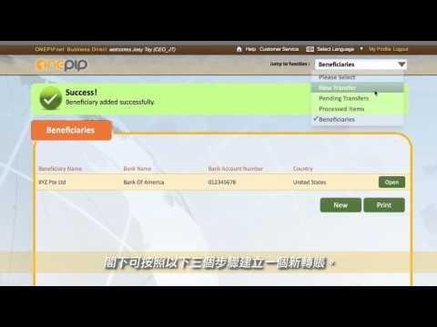 How To Make A Money Transfer via ONEPIPnet