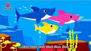 Nhạc thiếu nhi tiếng anh - Bé hát cá mập - Dễ thương - Cùng bé học tiếng anh
