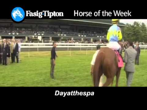 Fasig-Tipton Horse of the Week: Dayatthespa!