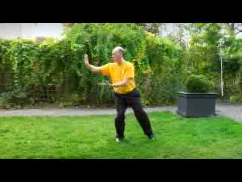 tai chi form of master moy youtube