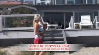 PARIS HILTON WITH HER DOGS ON BEACH IN MAILBU