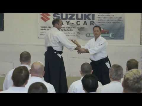 Aikido: Christan TISSIER in Budapest 2013 (teaching)