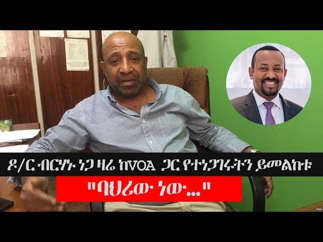 Ethiopia: VOA Interview with Dr Berhanu Nega