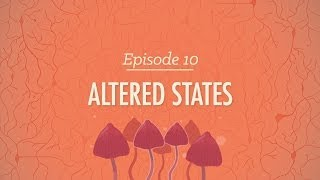 Altered States - Crash Course Psychology #10