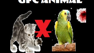 UFC Animal:Gato VS Papagaio!!!