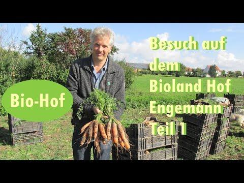 Besuch Auf Dem Bioland Hof Engemann Teil 1- Gemüse Anbau-Kohlrabiernte-Gründüngung