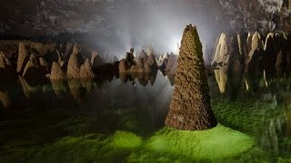 Explore Son Doong Cave - The biggest cave in the world