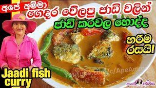 Traditional Sri lankan jaadi fish curry by Apé Amma
