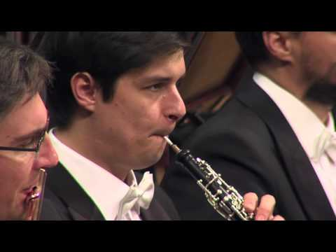 Beethoven - Storm From Pastoral Symphony No. 6. Concert For Kids