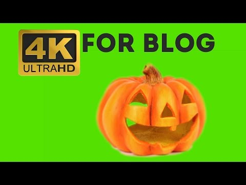 Halloween Pumpkin - Free Green Screen Effects 4K thumbnail