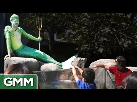 Real Life Merman Exhibit