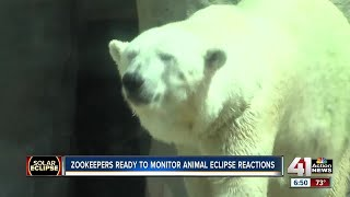 KC zookeepers eager to see how animals behave during solar eclipse
