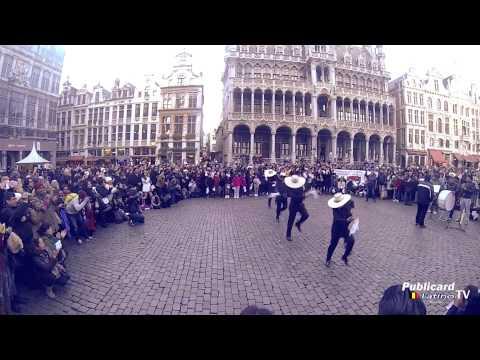 FLASH MOB DE MARINERA EN BELGICA 2014 - VIDEO OFICIAL